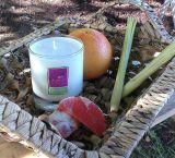Revitalising Grapefruit & Lemongrass - 300mls