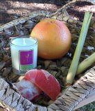 Revitalising Grapefruit & Lemongrass - 90mls